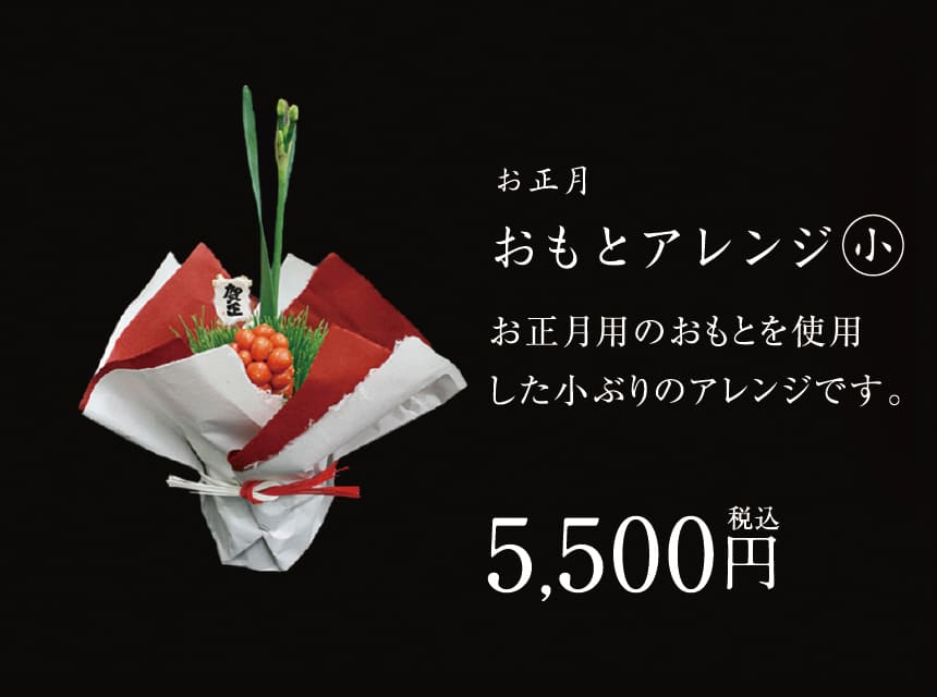 お正月おもとアレンジ(小)