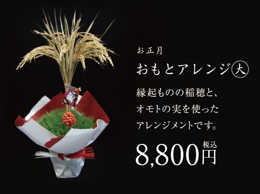 お正月おもとアレンジ(大)
