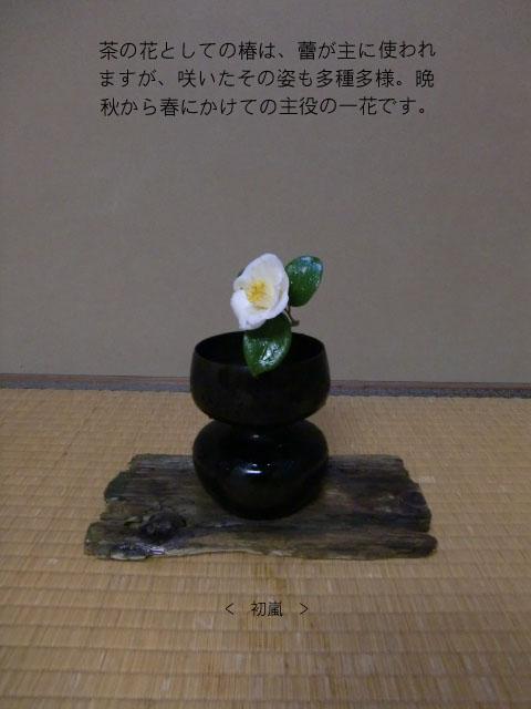 CIMG8422 ブログ