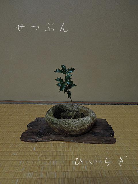 DSCN0456burogu