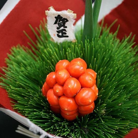 お正月おもとアレンジ(小) 14-WI-5