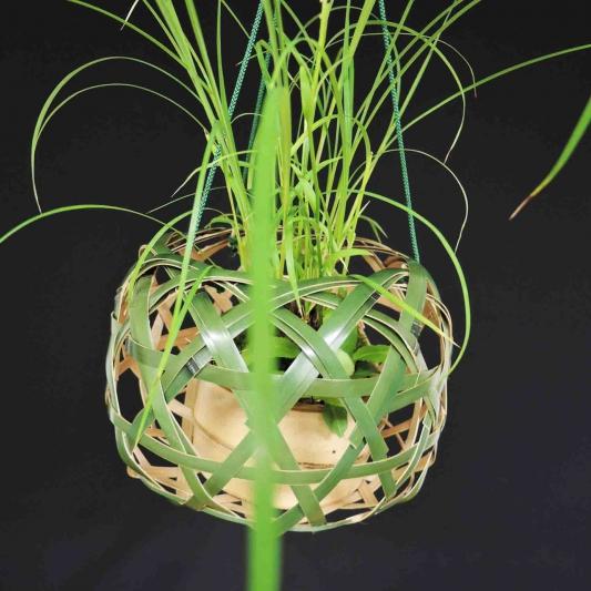 青竹吊り花籠